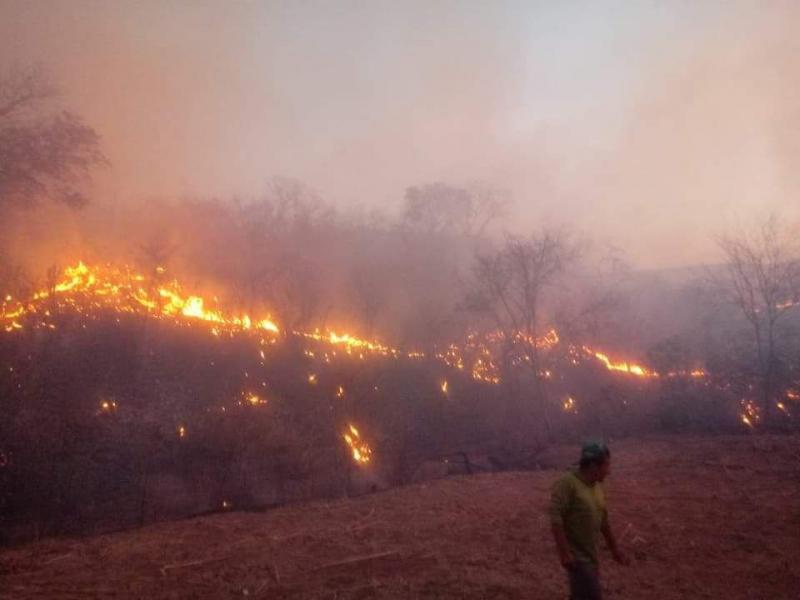 Incêndio de grandes proporções causa destruição no interior do Piauí