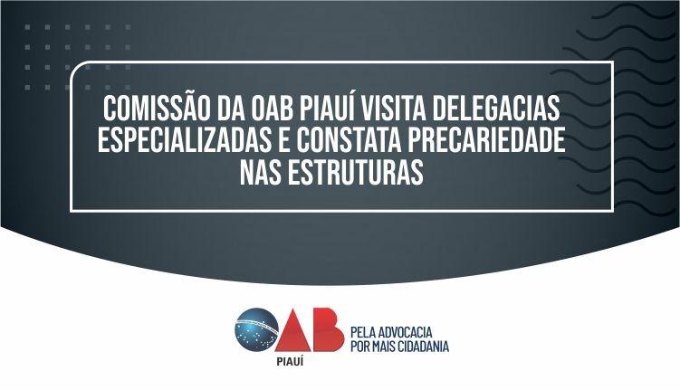 Comissão da OAB PI visita Delegacias Especializadas e constata precariedade