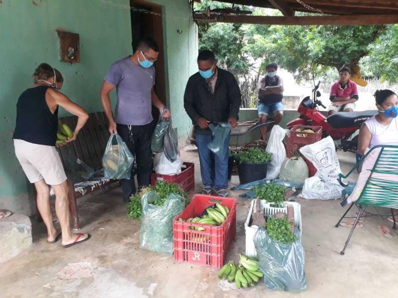 Agricultura de Cajazeiras entrega hortaliças e derivados para famílias