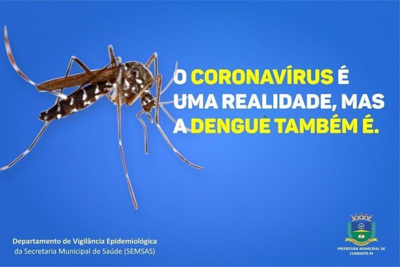 SEMSAS de Corrente disponibiliza número para denúncias de foco de Aedes