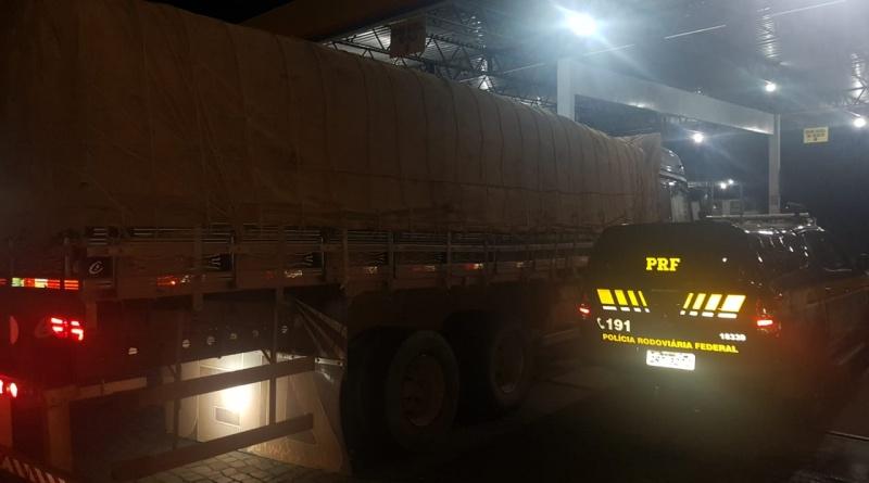 Caminhoneiro é preso com 23 m³ de madeira ilegal na BR 230