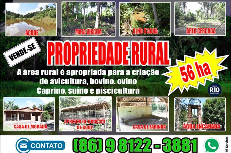 Vende-se uma propriedade rural com área de 56 hectares em Campo Largo-PI