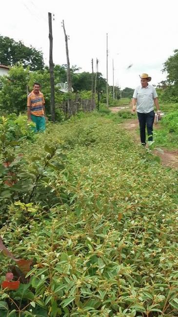 Jovem George Veloso visita a localidade Anajá visando possibilitar melhorias