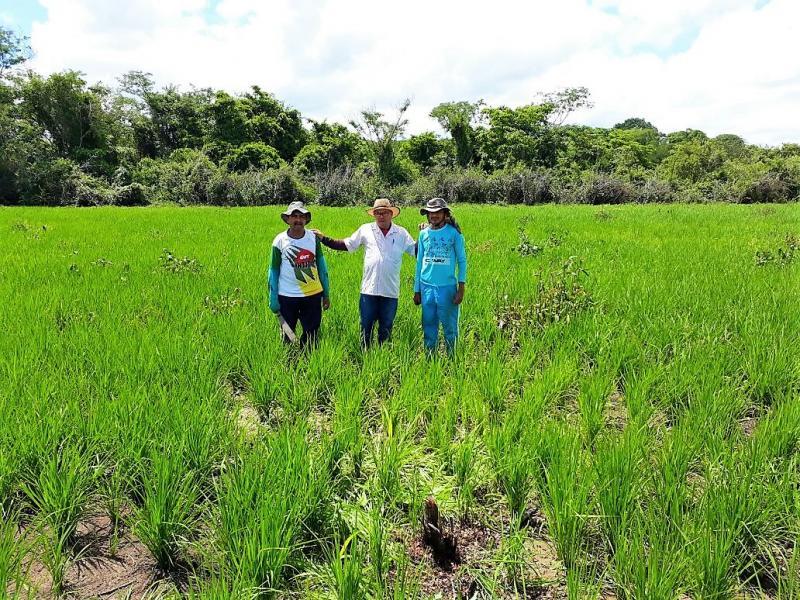 Prefeitura de Joaquim Pires realiza aração de terras para pequenos produtores rurais