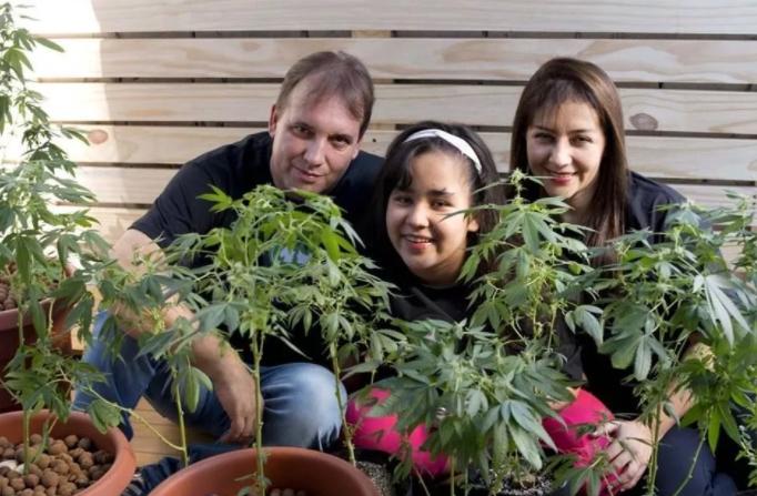 Justiça autoriza família a plantar maconha em casa