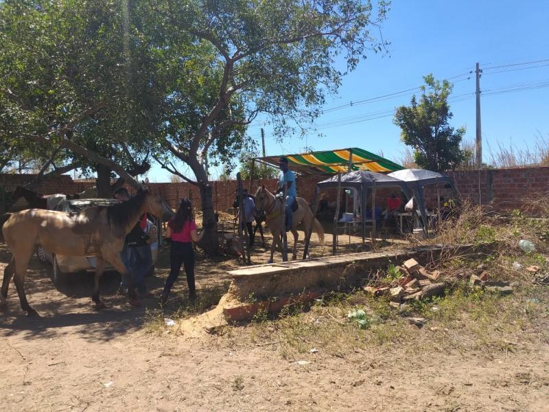 Fiscalização flagra vaquejada na zona sul de Teresina
