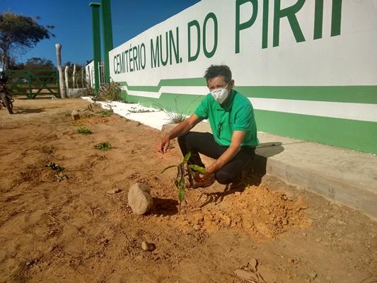 Projeto de arborização chega ao cemitério de Colônia do Gurgueia