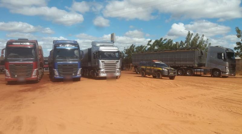 PRF apreende madeira ilegal sendo transportada na BR 135, no Piauí