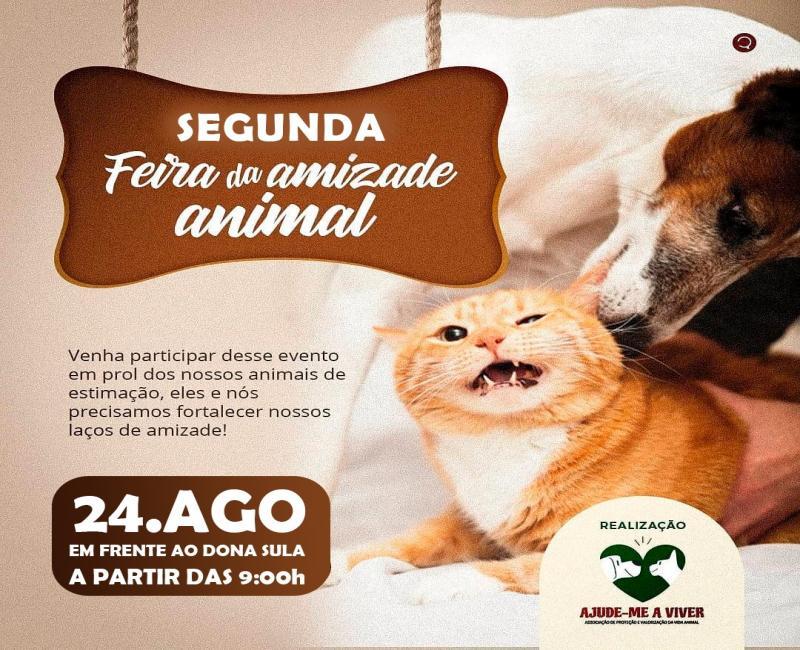 Segunda feira da amizade animal