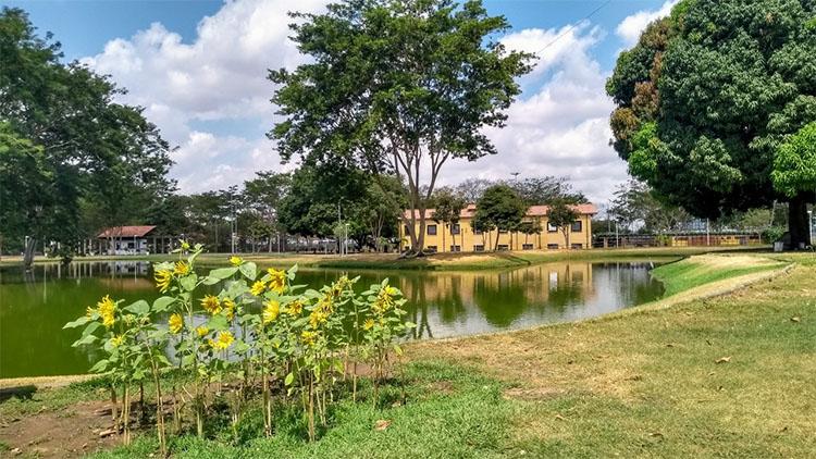 Parques ambientais voltam a funcionar de terça a domingo
