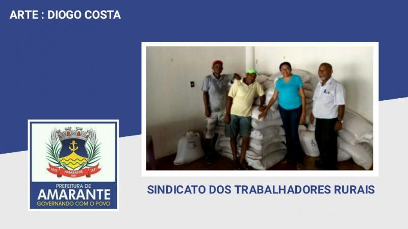 Sindicato entrega 2300 Kg de sementes a agricultores de Amarante