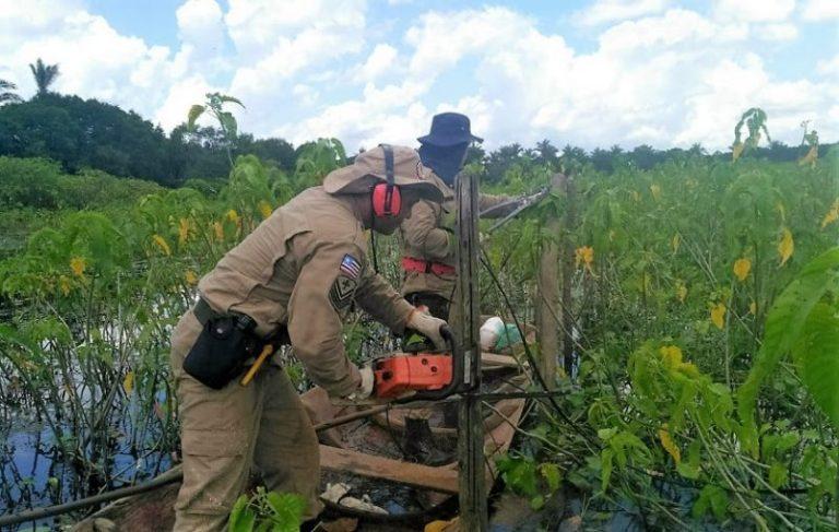 Operação Baixada Livre retira cercas ilegais de área de proteção ambiental