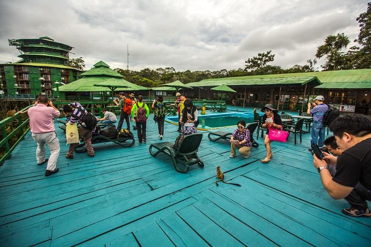 Turistas chineses visitam a Amazônia. Crédito: Embratur