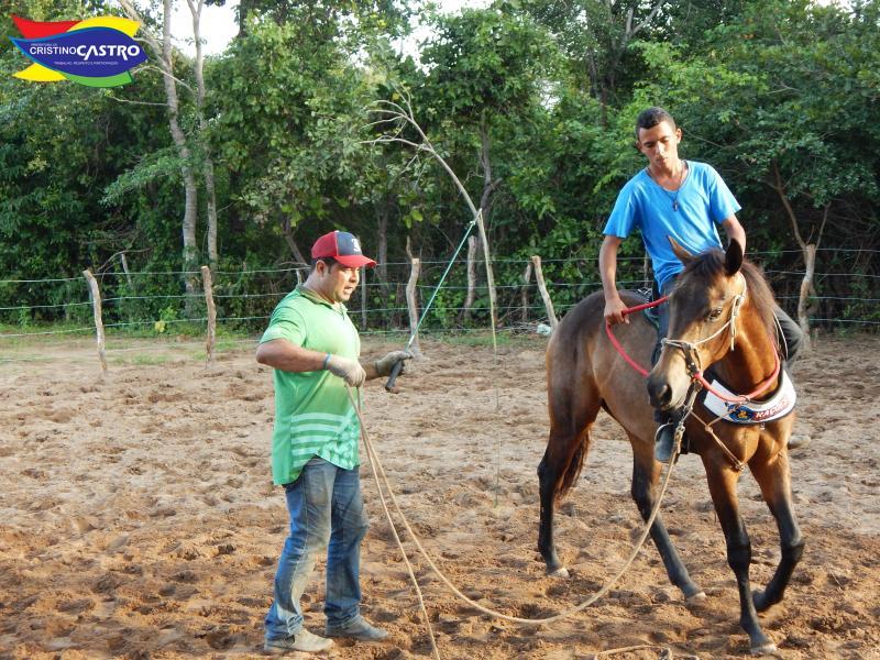 Prefeitura de Cristino Castro realizou o curso de Rédeas e Doma racional de equinos