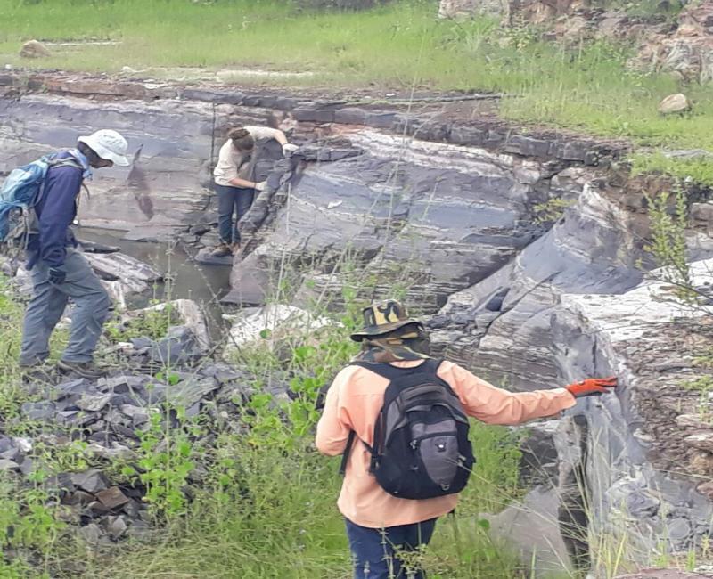 Pesquisadores descobrem fóssil raro em Nazária