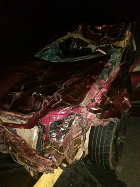Homem morre após colidir carro com vaca em rodovia no Piauí