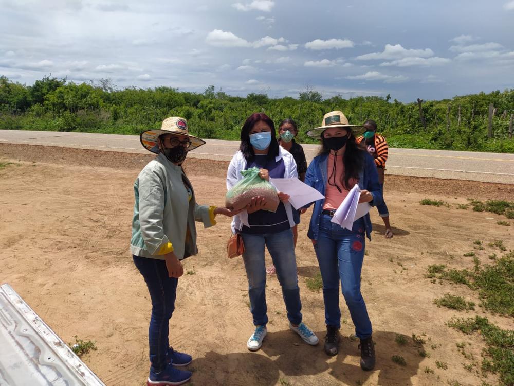Agricultores são beneficiados com a entrega de sementes em S. Mendes