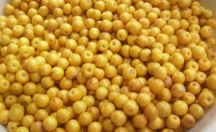 Período de Colheita do murici atrai muitos matienses