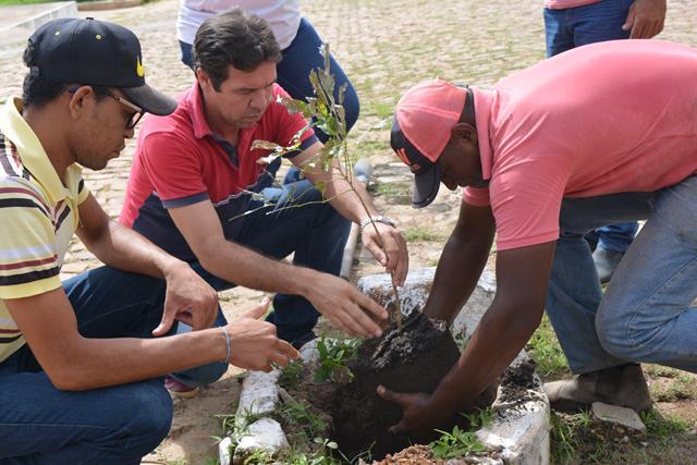 Secretaria de Meio Ambiente de Pimenteiras realiza plantio mudas