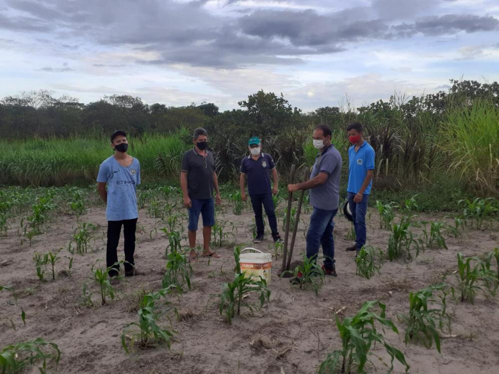 Ipiranga| Secretaria realiza coleta de solo para melhorar produtividade