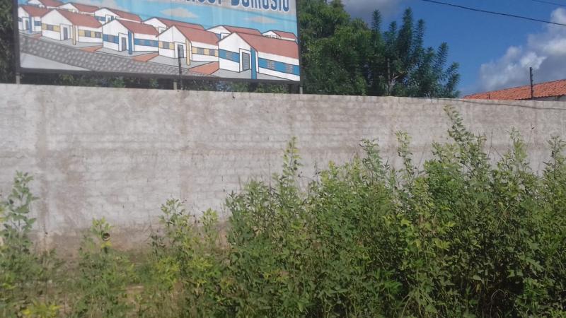 Moradores do Residencial Manoel Damasio reclamam de abandono por parte da prefeitura