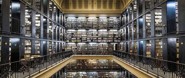 Estudantes brasileiros devem demorar mais de 260 anos para atingir qualidade de leitura de países de