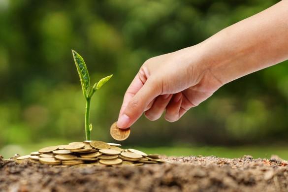 Prazo para municípios aderirem ao ICMS Ecológico termina sexta