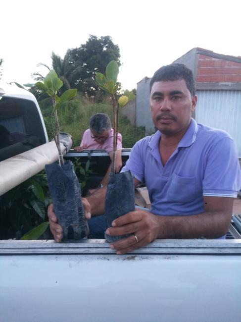 Aquisiçao de mudas frutiferas, com o superintendente de recursos hídricos Dr Romildo Macêdo