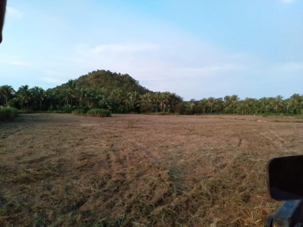 Prefeitura de Pau D'arco do PI apoia pequenos produtores