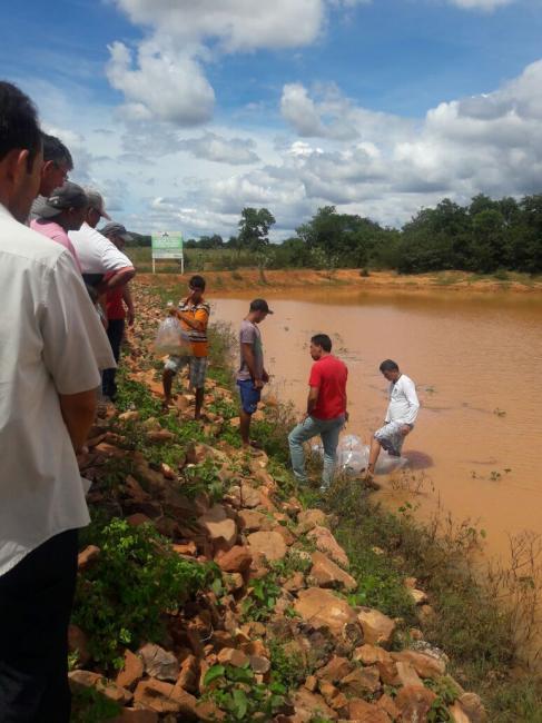 Vereador João Filho consegue para o munícipio de São Gonçalo 32 mil peixes de espécies diferentes