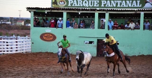 Organização da Vaquejada de Pimenteiras confirma 1ª atração musical