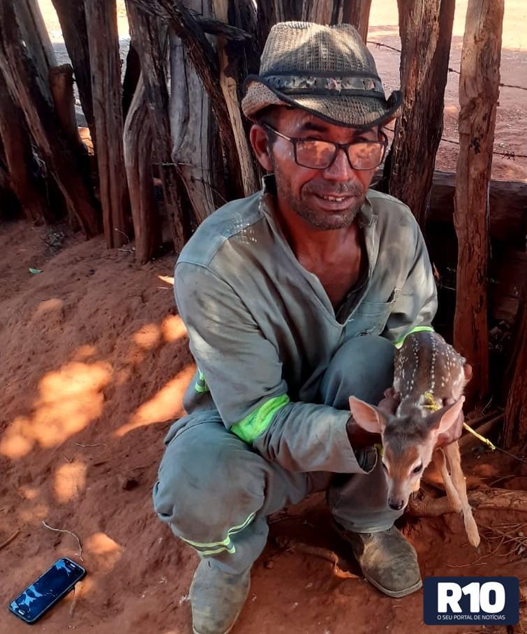 Morador chora ao filmar fogo devastando sonho de dezenas de anos no Piauí