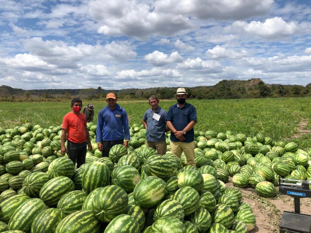 Prefeito Nilton Bacelar visita agricultor na localidade Contendas em Pau D'arco