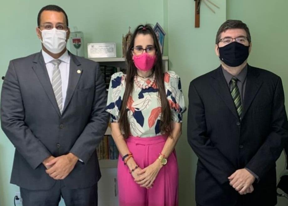Em reunião com o TJ-PI, OAB Piauí debate sobre as demandas das Varas de Famílias