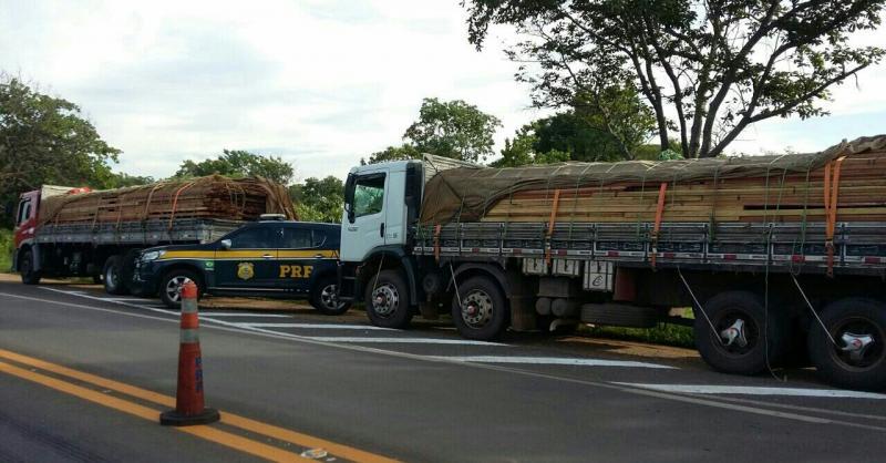 PRF apreende caminhão com mais de 30 ton de madeira ilegal na BR-316