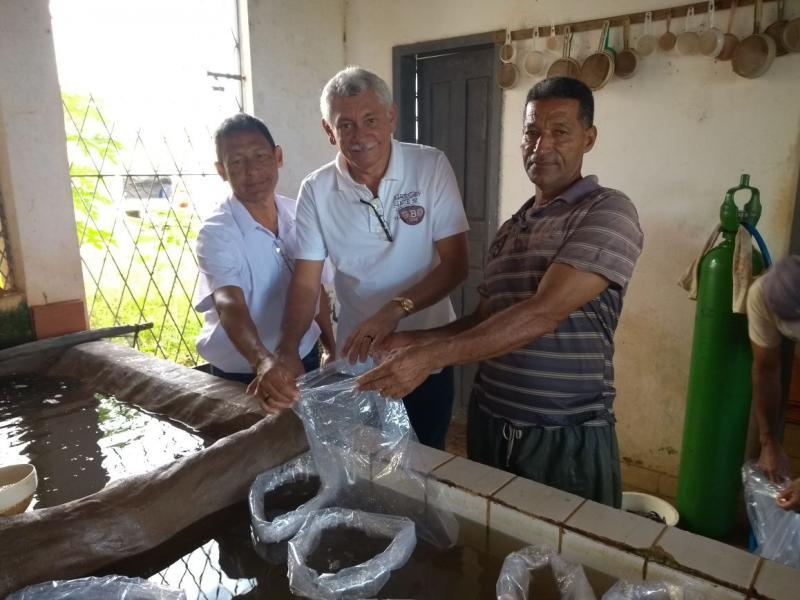 Prefeitura fez distribuição de alevinos para famílias de NSR