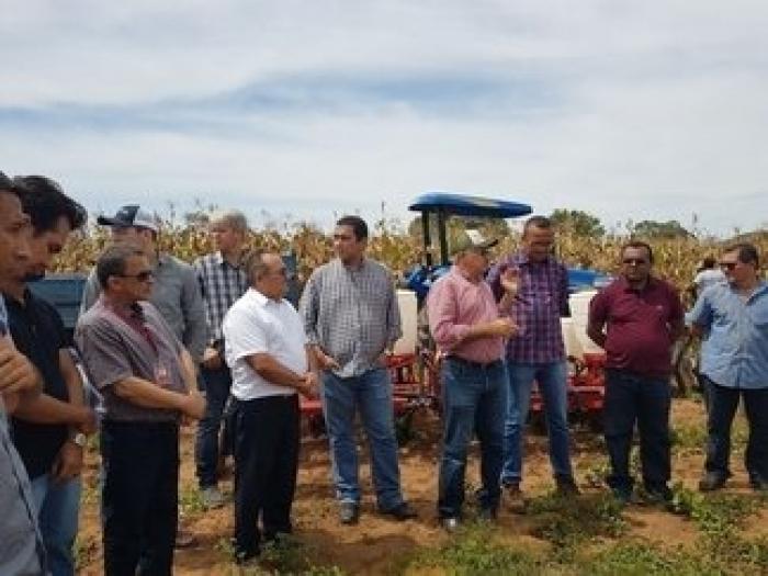 Uespi conduz trabalho de revitalização da cultura do milho na região de Oeiras