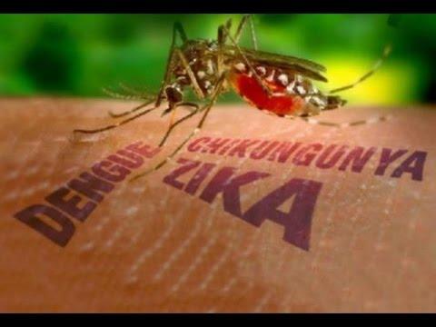 Secretaria de Saúde de Barra D´Alcântara realizou campanha contra o mosquito Aedes Aegypti