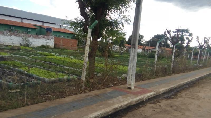 Prefeitura de Valença do Piauí e Secretaria de Agricultura realizam limpezas em hortas da cidade