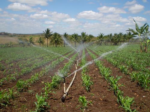 Prefeitura continua instalando kits de irrigação para a agricultores familiares