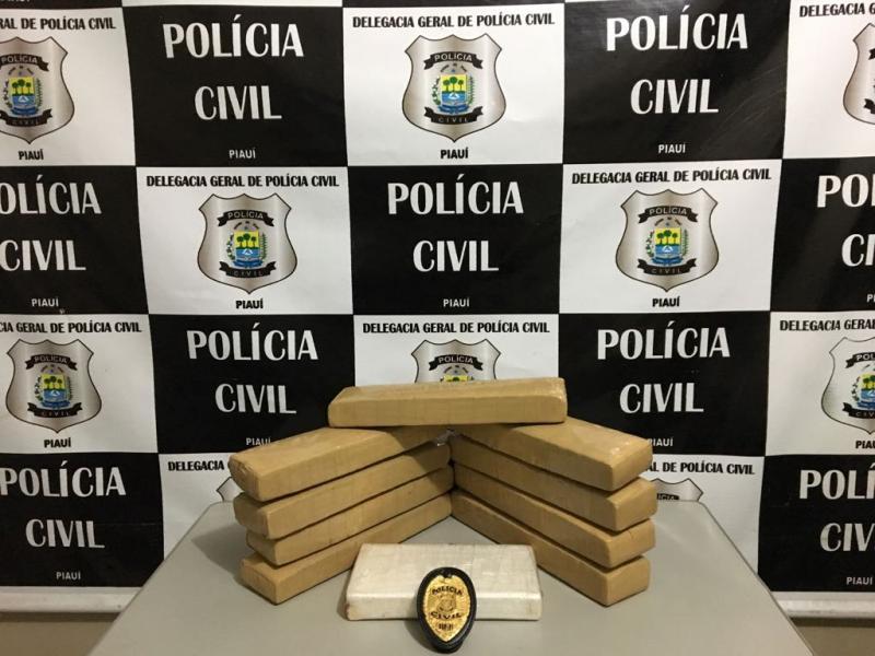 Polícia apreende 10 kg de droga vinda de São Paulo no Piauí