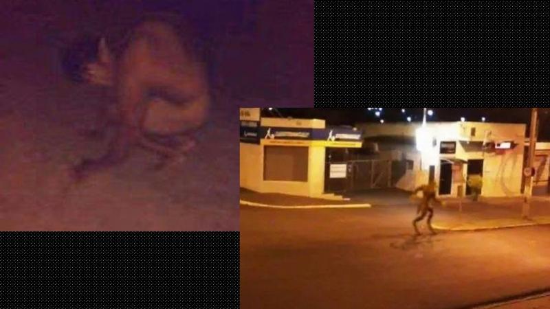 Moradores garantem ter visto lobisomem em município do Piauí