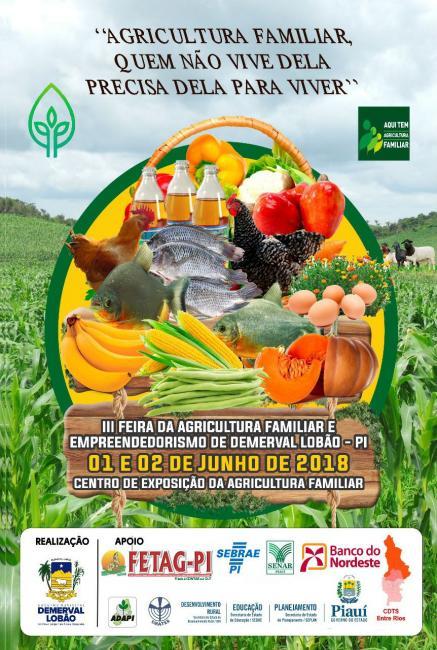 Demerval Lobão   dias 01 e 02 de junho 'III Feira da Agricultura Familiar e Empreendedorismo'
