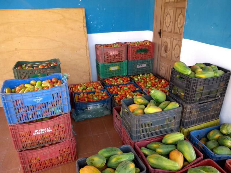 Alimentos é distribuido a população