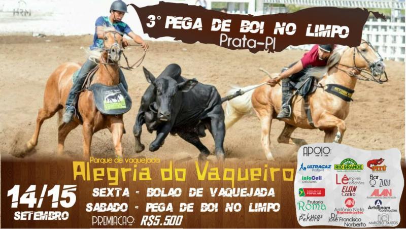 Pega de boi no limpo em Prata do Piauí