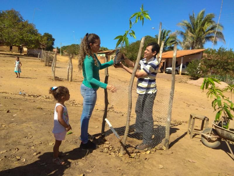 Secretaria do Meio Ambiente realiza plantio de mudas no povoado Joshulda Neiva