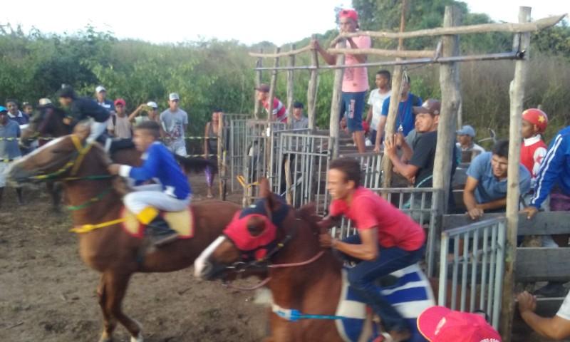 Confira como foi a corrida de cavalos da localidade Pitombeira